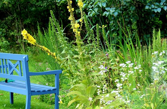 favoriser environnement avec jardin