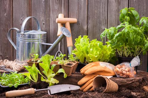 accessoires jardinage