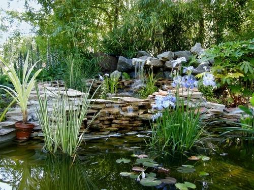 cascade-bassin